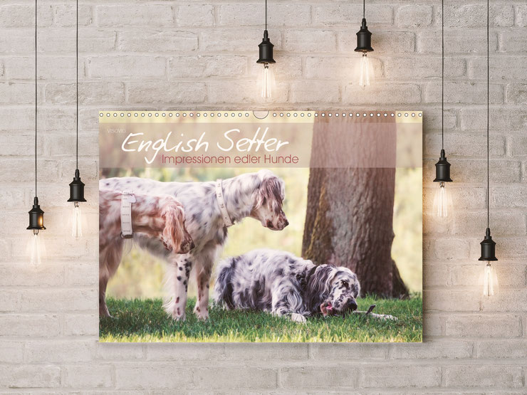 English Setter Kunstkalender 2020 von VISOVIO English Setter - Impressionen edler Hunde