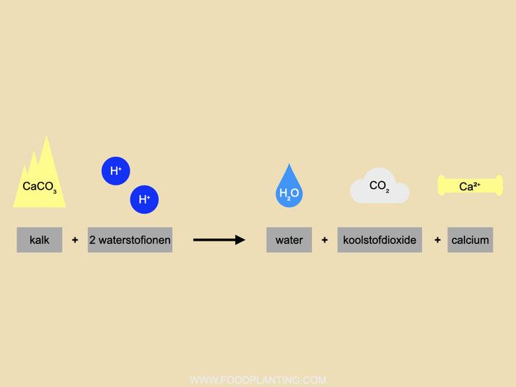 calciumcarbonaat reactie