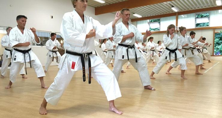 Karatekämpfer trainieren Karate während eines Seminars im Karate-Dojo Münster.