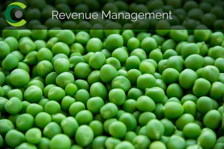 Hotelberatung | Revenue Management