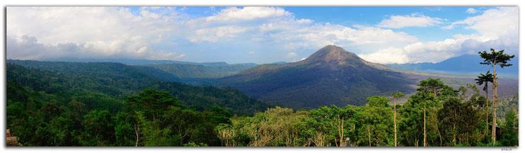Vulkan in bewaldeter Caldera