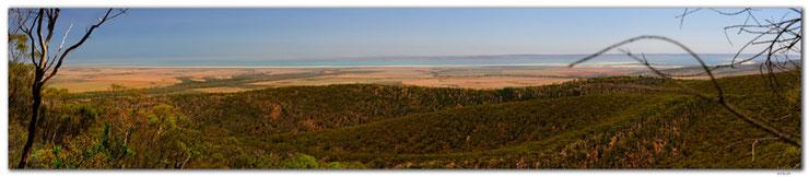 Panorama mit Wald und Meer