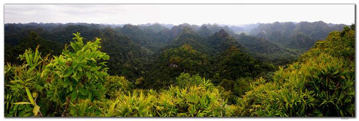Dschungelüberzogene Berge auf Cat Ba Insel in Vietnam.