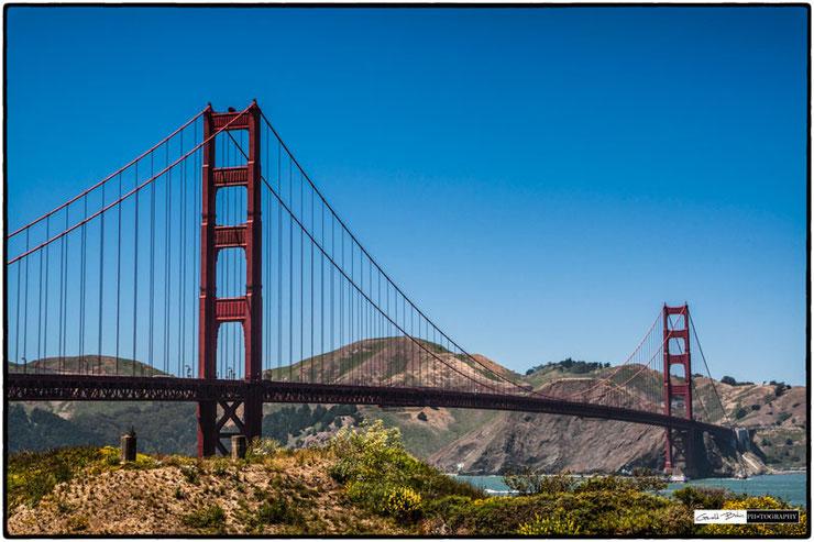 Golden Gate Bridge seen from Crissy Field, San Francisco