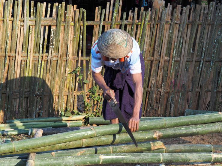 Bambusrohrschneider
