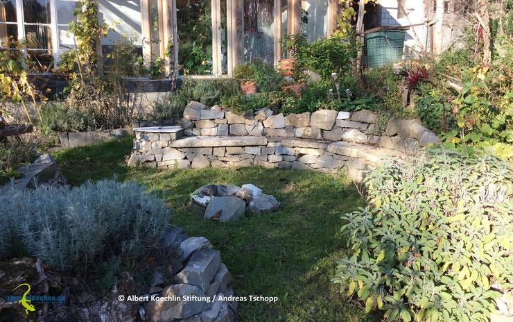 Privatgärten können, wenn sie naturnah gestaltet und versteckreich sind, einen angrenzenden Zauneidechsenlebensraum in wertvoller Weise ergän-zen. Meist ist aber ein minimaler Schutz gegen Hauskatzen unumgänglich.