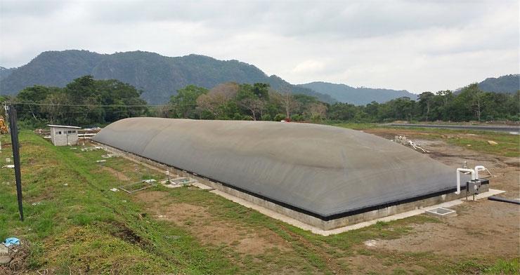Biodigestor para gallinaza pura - aprovechamiento de guano puro en un biodigestor