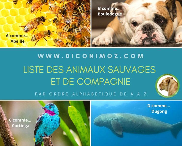 liste alphabétique des animaux du monde