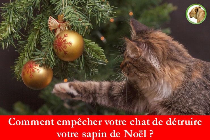 comment empecher son chat de détruire son sapin de noel proteger arbre eloigner boules guirlandes