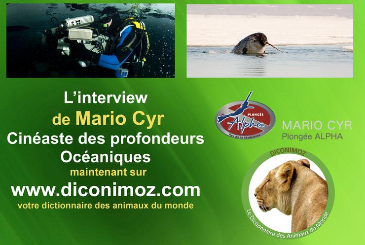 interview de Mario Cyr cineaste des profondeurs oceaniques photographe de l'extreme