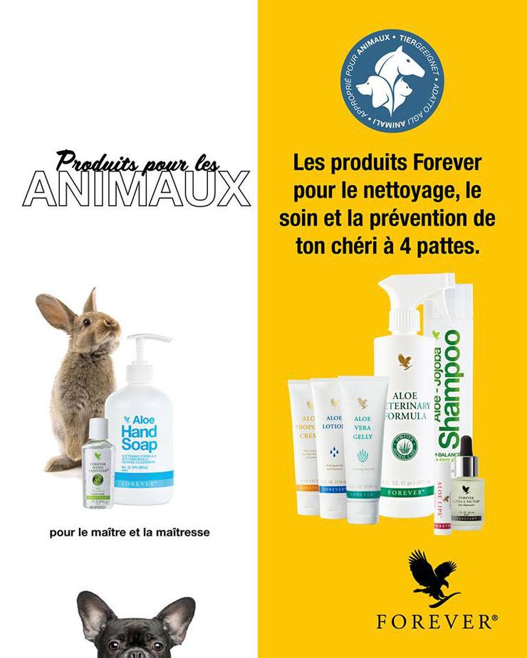 produits gamme forever aloe vera bien etre animal soin chat chien chevaux animaux domestique sante entretien poil