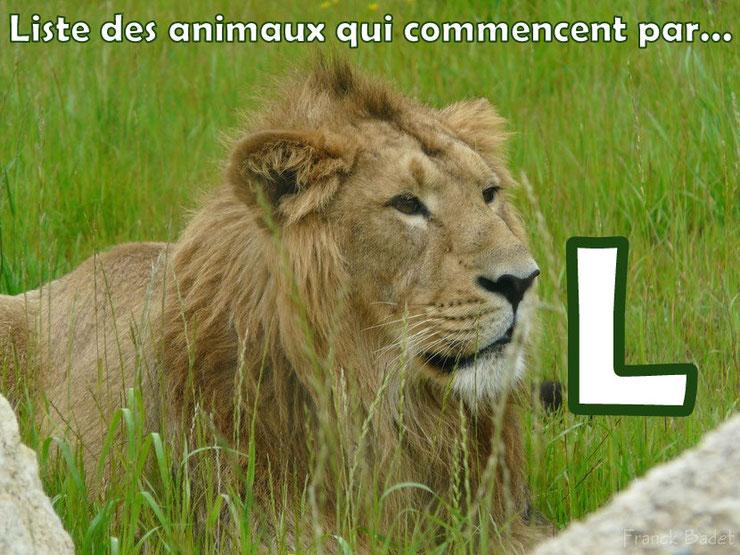 liste des animaux qui commencent par la lettre L