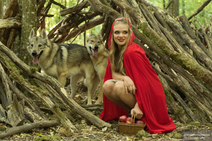 animaux histoire chaperon rouge chien loup tchecoslovaque fille shooting photographe lyon villefranche tarare feurs