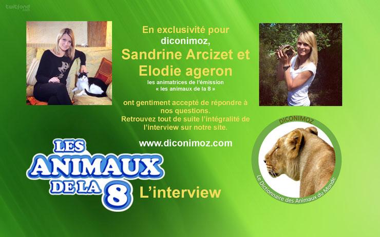 interview animaux de la 8 elodie ageron sandrine arcizet c8