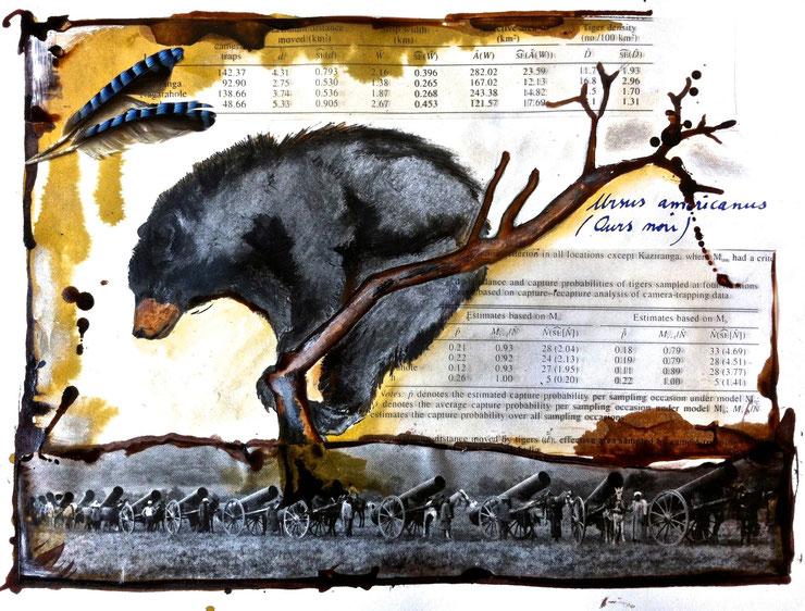 ours noir quebec toile peinture perrine crosmary