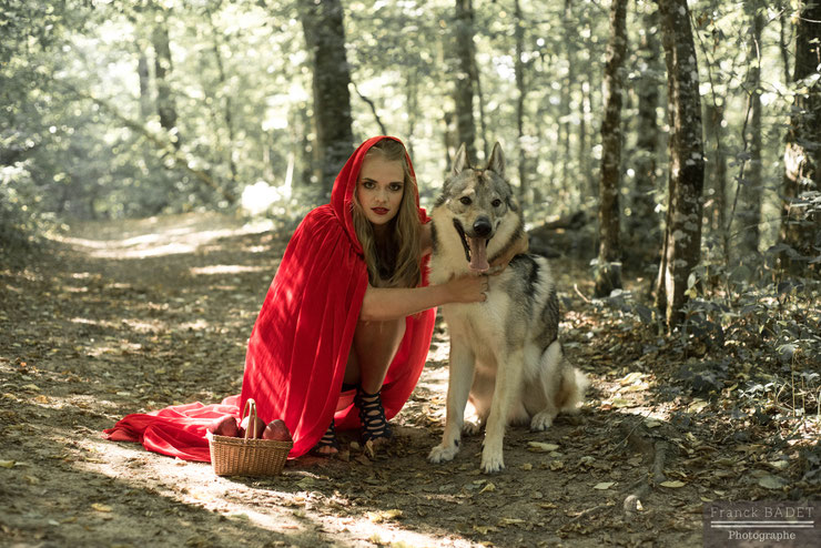 chaperon rouge little red riding hood dog wolf animaux shooting photographe lyon tarare villefranche