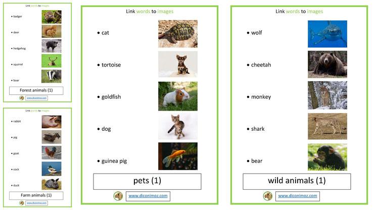 lin word to images relie les mots aux animaux apprend l'anglais en t'amusant avec les fiches de diconimoz