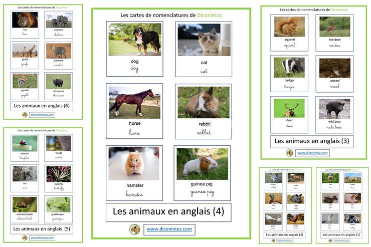 cartes fiches nomenclature en anglais animaux ecriture cursives maternelle apprentissage enfants pedagogiques
