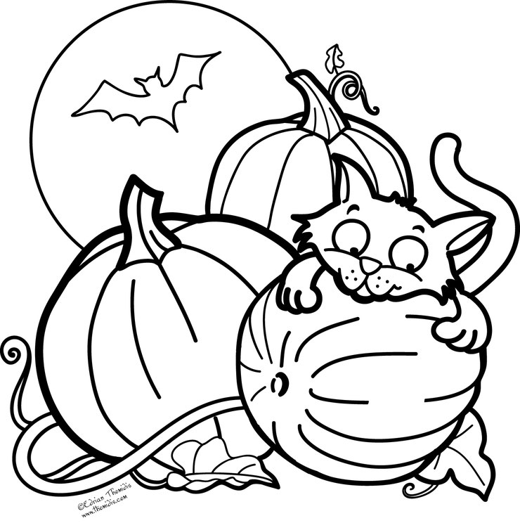 coloriage halloween chat cat pumkin coulours