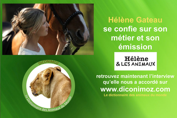helene et les animaux interview reportage
