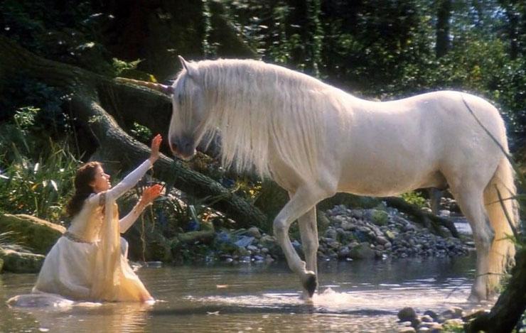 liste des animaux fantastiques et contes de fee creatures legendaires licorne