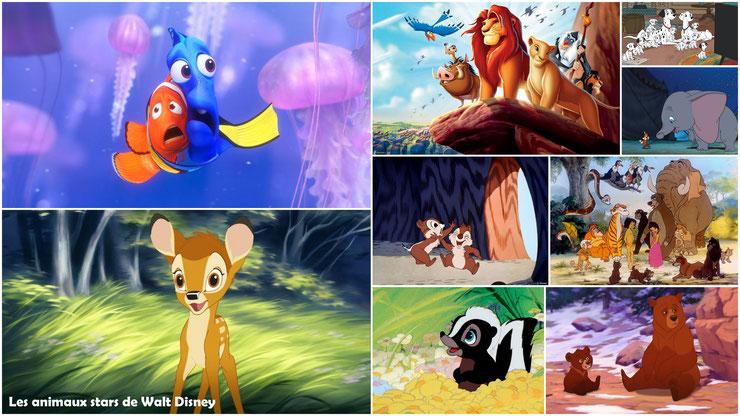 les animaux vedettes des dessins animés de waly disney bambi nemo dumbo les 101 dalmatiens tic et tac simba timon et pumba