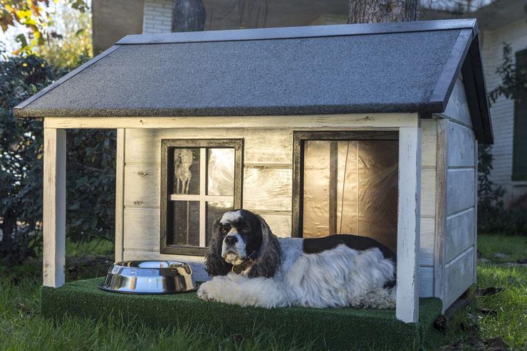 quelle taille de niche pour mon chien
