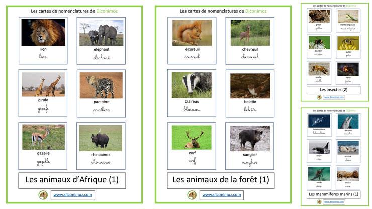 cartes de nomenclatures animaux ecriture cursive et script classifiées