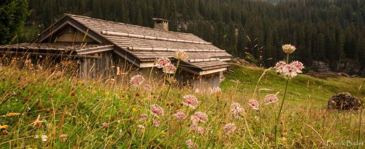 chalet les lindarets paysages montagnes haute savoie chevre village