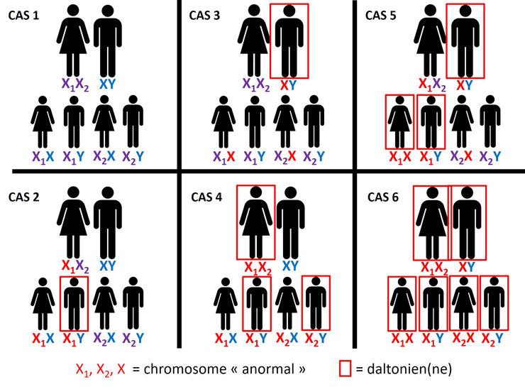Hérédité et daltonisme
