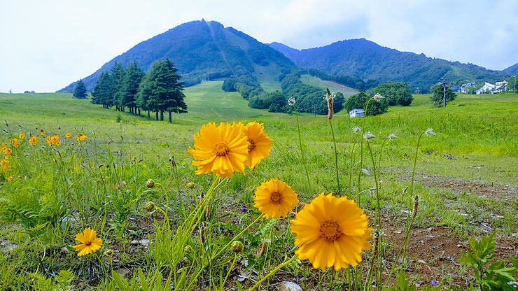 Akaitobira Lodge