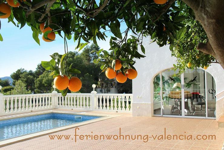 Ferienwohnung Valencia, Foto vom 28.12.2013