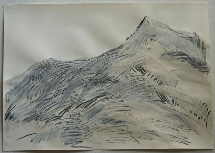 canigou  /  pyrenées  2013  gouache  feltpen  oilcrayon on paper    50  x  70   cm