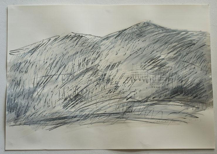 el avila  /  caracas  2013     gouache  feltpen  oilcrayon  on paper    50  x  70   cm