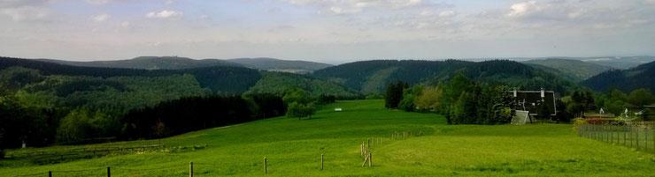 Der Thüringer Wald bei Gehlberg