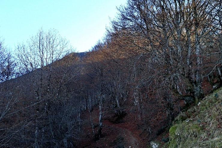 Tout au fond, légèrement à gauche, le Pic de Teulère.