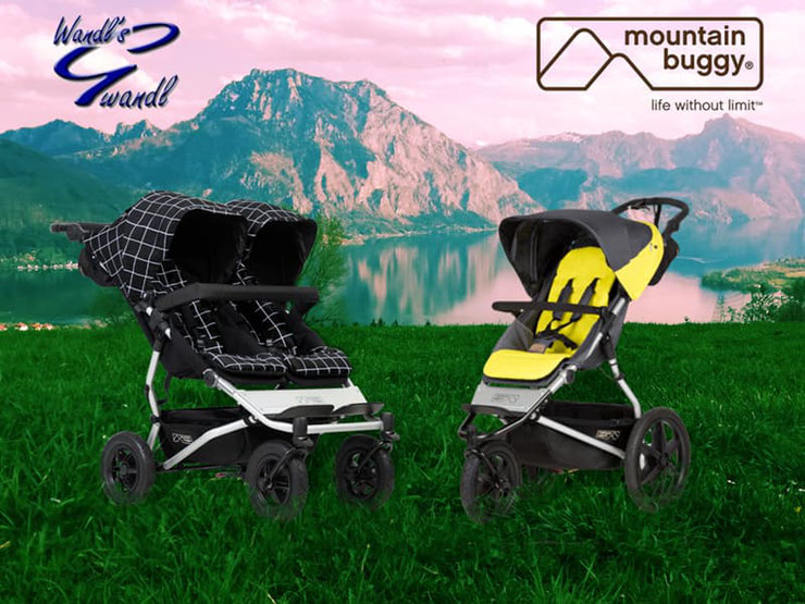 mountain-buggy-terrain-solus