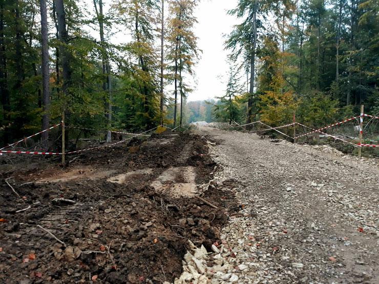 Wie auf diesem Bild - anderenorts auafgenommen - könnten die Transportwege im Reinhardswald aussehen.