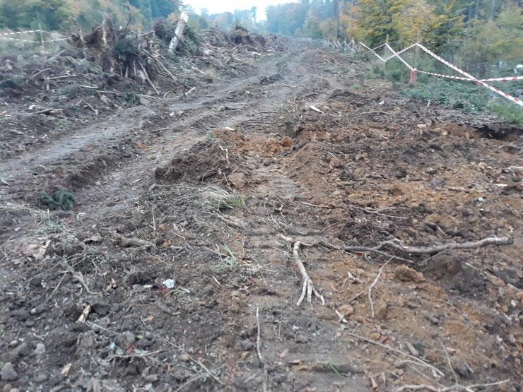 Auf der Fläche KS02 auf dem Gebiet des Naturparks wurde bereits mit den Arbeiten für 3 Windenergieanlagen begonnen.