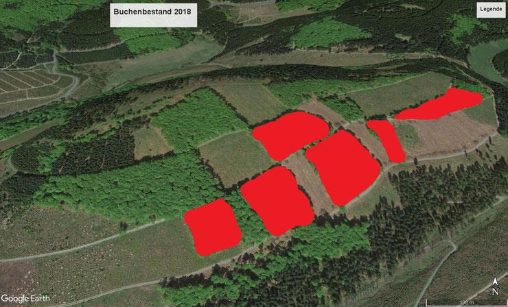 Die rot markierten Flächen sind ebenfalls in 2020 kahlgeschlagen!