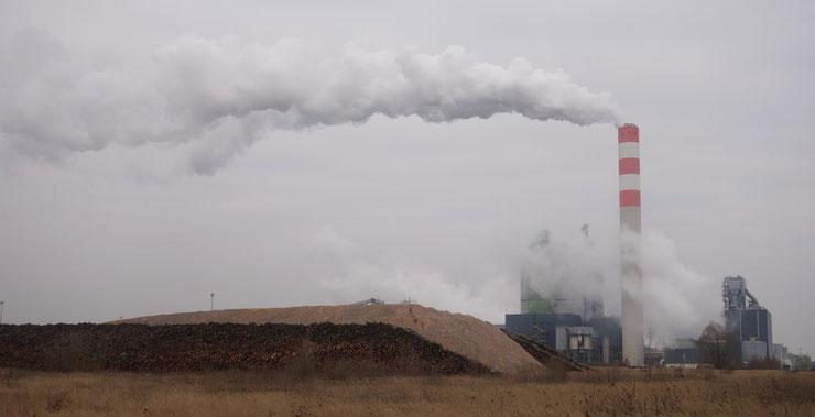 Biomassekraftwerk © P.Ludwig-Sidow