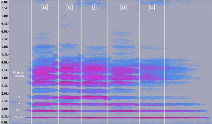 Spektrogramm der Vokale a,e,i,o,u gesungen von einer Profi-Sängerin auf gleicher TonHöhe