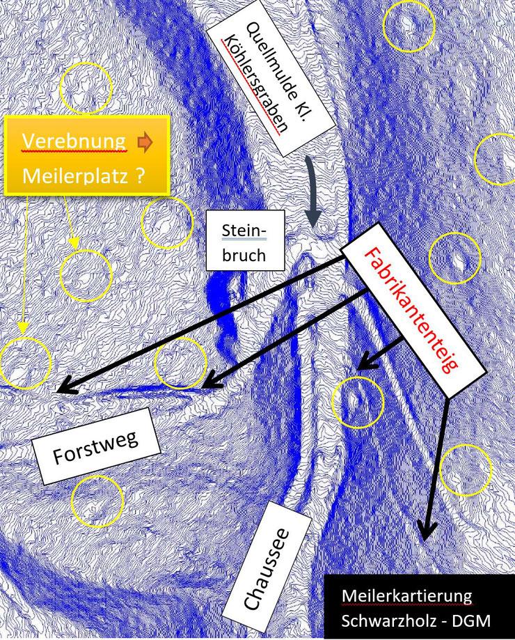 Digitales Geländemodell zur Prospektion von Meilerplätzen im Schwarzholz