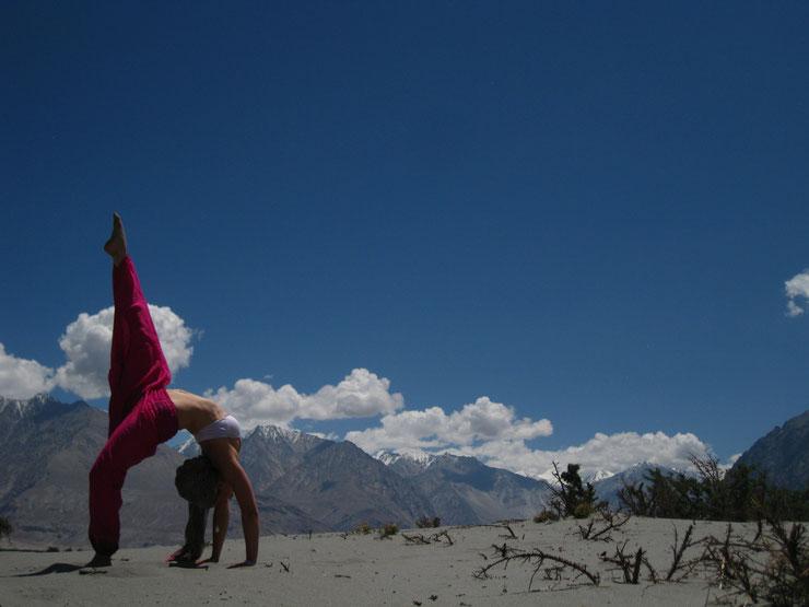 Eka Pada Urdhva Danurasana Yoga India Ladakh Leh Himalaya Sunny Samadhi