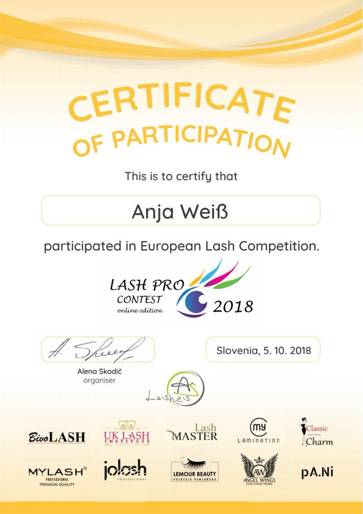 Lash Pro Contest