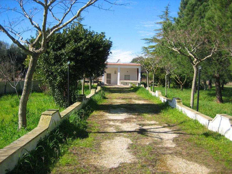 Zufahrt zum Anwesen im Frühjahr 2010