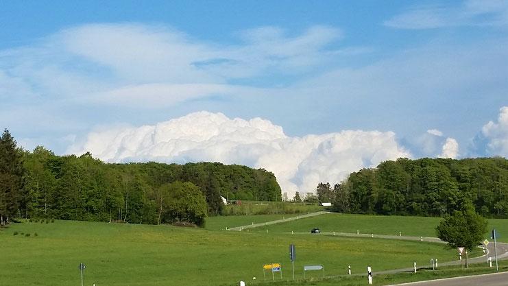 Ein gewaltiger Wolkenberg schiebt sich hinter dem Wald hoch.