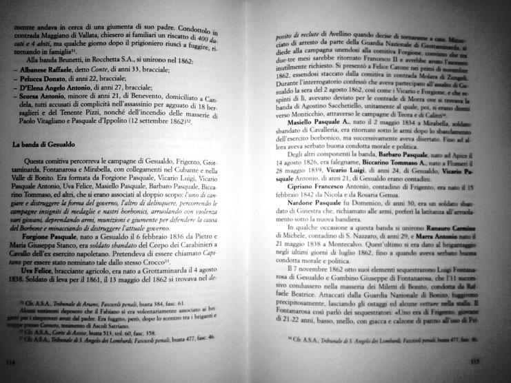 da AA VV. IL BRIGANTAGGIO FRA IL 1799 E IL 1865 MOVIMENTO CRIMINALE, POLITICO O RIVOLTA SOCIALE? STORIE DI FATTI BRIGANTESCHI FRA L'ARIANESE, L'IRPINIA, IL VALLO DI BOVINO, MELFI NEL VULTURE E LA CALABRIA