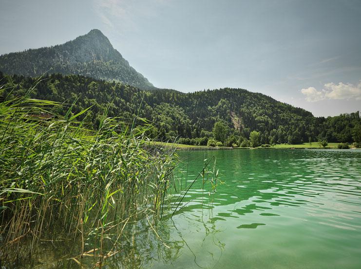 Thiersee, baden, Sport, Tirol, Freizeit, Familie, See, schwimmen, Kinder, Sommer, Natur, wandern
