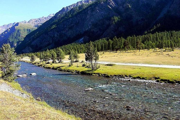 Un suggestivo scorcio naturale della Valle Argentera